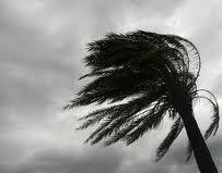 Казалось, еще чуть-чуть, и меня тоже унесет ураганом